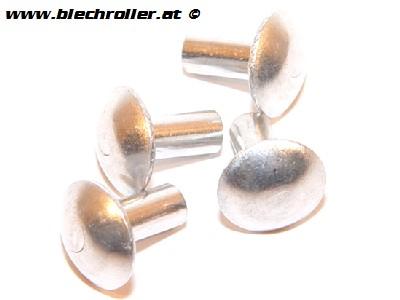 Nietensatz 12x10 mm für Schwingsattel/Sitzbank, seitlich