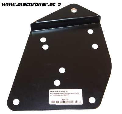 Montageplatte Rennauspuff Malossi RX für TGB Bellavita 125/300