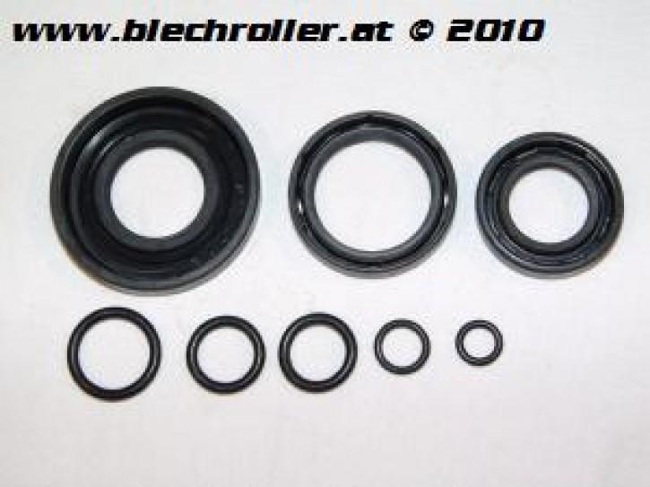 Simmeringsatz V50/90/100/PV/ET3/PK50-125S, inkl. O-Ringen
